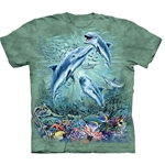 Find 12 Dolphins Youth's Tee Shirt